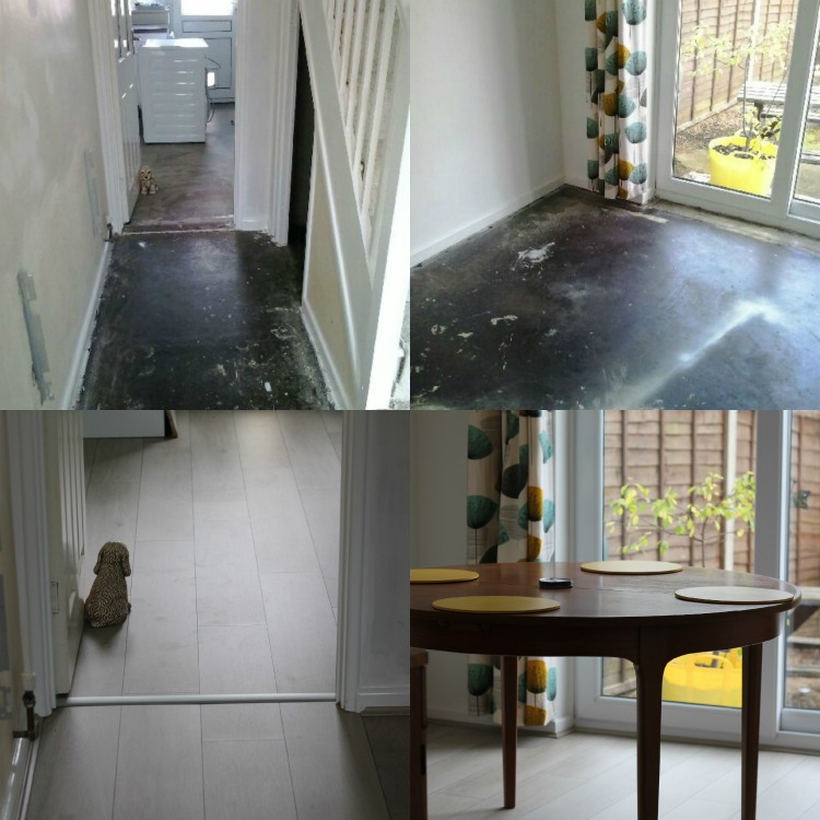 Top row - the concrete floors hath returned! Bottom row - a little look at the progress we have made. It also needs cleaning FML!